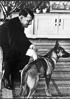 This is NOT Blondi. Blondi came much later, according to putschgirl. Nonetheless, Der Füehrer loved animals, and animals loved him. A lesson for us all.