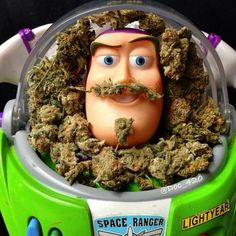 Stoners from space, I come in peace