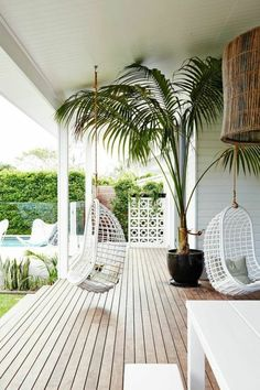 ambiance cocooning, jardin, plantes tropicales, chaise suspendue, table blanche