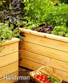 Build a raised planting bed and have tonight's salad at your fingertips!