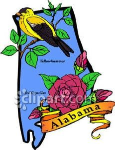 Alabama State Bird Yellowhammer Flower Camillia