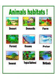English teaching worksheets: Animal habitats | teaching ...