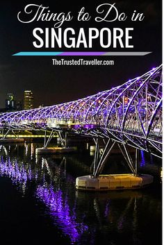 The Helix Bridge - Things to Do in Singapore - The Trusted Traveller