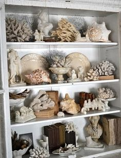 Decorating Inspiration: Displaying Collections in Your Home These beautiful bookcases are filled with shells and coral intermingled with books and other decorative items: Vitrine Pour Collection, Shell Collection, Nature Collection, Collection Displays, Rock Collection, Coastal Style, Coastal Decor, Beach House Decor, Home Decor