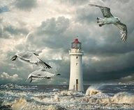 ~~ Gulls at Perch Rock Lighthouse, River Mercy, New Brighton by Tarrby~~ Beautiful Places, Beautiful Pictures, Lighthouse Painting, Lighthouse Pictures, New Brighton, Beacon Of Light, Am Meer, Seaside, Scenery