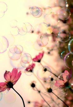 Fleurs et Bulles !!