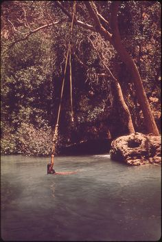 I need a thousand more rope swings in my life.