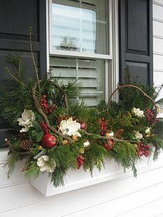 Winter window box....
