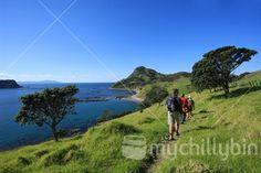 Walkers at Coastal Walkway between Fletcher Bay and Stony Bay, Coromandel: