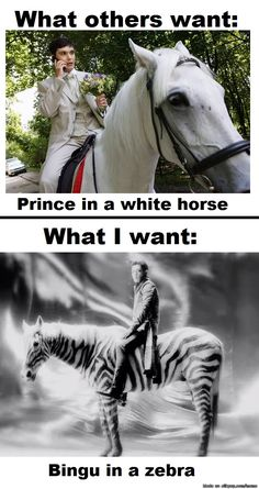 This.  This is Accurate.    T.O.P... Although I'd rather have him on the zebra instead of inside it....
