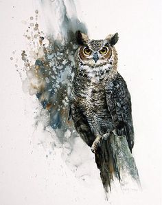 Great Horned Owl by Morton E. Solberg