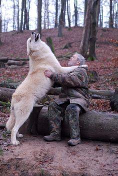 شان میتواند با صدا با گرگها ارتباط برقرار کند، با آنها غذا میخورد و گرگها را مثل خانوادهاش دوست دارد. او با همسرش دکتر ایسلا فیشبرن، زیستشناس، موسسه «مرکز گُرگ» را در بریتانیا اداره میکنند. شان در یک فیلم مستند درباره رابطهاش با گرگها گفته من هم مثل بقیه آدمهایی هستم که زندگی شهری و مدرنی دارند اما برای نزدیک شدن به گرگها و برای اینکه آنها من را بین خودشان بپذیرند، مجبورم با آنها گوشت خام بخورم یا همیشه یک لباس بپوشم تا بوی من را بشناسند و من را در جمعشان راه دهند.