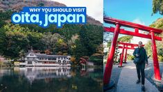 Oita is one of those places that are probably unheard of outside Japan but are pretty well-known domestically. Before my trip, I didn't know anything Kumamoto, Kyushu, Japan Trip, Japan Travel, Underwater Caves, Beppu, Oita, National Treasure, Fukuoka