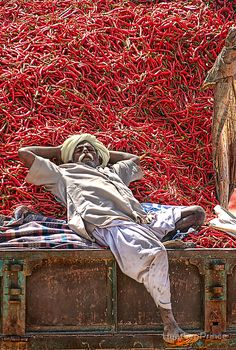 This worker was taking a midday nap on the back of a truck loaded with chillies that were about to be dried.