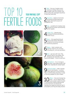 econest: what to eat to improve your fertility (and a fertile torte recipe)