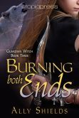 Burning Both Ends (Guardian Witch #3) Available now from online booksellers. ~ Even a witch can't be two places at one, but sometimes she has to try.~