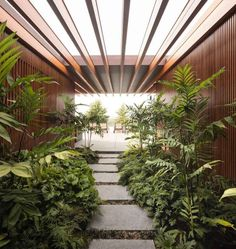 designed by Jacobsen Arquitetura located in . photography by Fernando Guerra Use to be… Tropical Garden Design, Tropical Landscaping, Tropical Houses, Landscaping Ideas, What Is Landscape, Landscape Design Plans, Landscape Architecture, Small Courtyard Gardens, Terrace Garden