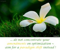 ... do not concentrate your -amendments on optimization ~ aim for a #paradigm_shift instead !