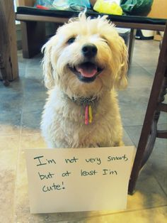 hehe.. Don't worry, I don't mind if you are not smart. :)