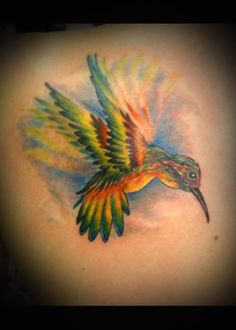 Excellent use of color and the shading that illustrates movement of the wings!