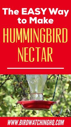 Learn the simple hummingbird nectar recipe you should be using today! Make delicious hummingbird food in under 5 minutes w/ two ingredients. food recipe homemade The 2019 Hummingbird Food Guide (Easy Nectar Recipe + FAQ) - Bird Watching HQ Hummingbird Feeder Recipe, Homemade Hummingbird Nectar, Homemade Hummingbird Food, Sugar Water For Hummingbirds, Flowers That Attract Hummingbirds, Baby Hummingbirds, Diy Bird Feeder, Humming Bird Feeders, Humming Birds