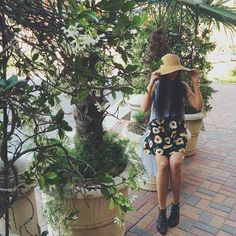 Sunflower love from UO New Orleans.