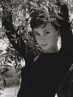 Audrey Hepburn by Philippe Halsman , 1955