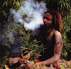 The healing of the nation! Rasta!