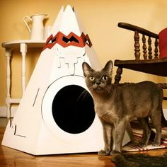 The Native American Teepee: This cardboard house comes from the Canadian company Loyal Luxe; the tipi package contains three cardboard balls and is available with six interchangeable decorative options. It comes flat and is easy to assemble. Cool Cats, Cool Cat Beds, Cat Teepee, Cat Tent, Crazy Cat Lady, Crazy Cats, Cat Club, Cat Habitat, Cat Playhouse