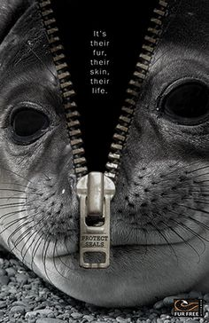 Design against fur: Protect seals.  READ labels and RESEARCH before you buy.
