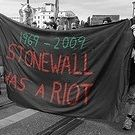 Saturday marks the anniversary of the riots at the Stonewall Inn in Manhattan's Greenwich Village. From the Weekend All Things Considered archives, here's David Isay's 1989 documentary on the. Gay Rights Movement, Stonewall Inn, Historian, Summer 2014, Documentary, Lesbian, David, Modern, Trendy Tree
