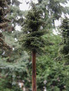 "This article describes how to make the most realistic miniature trees for your HO or ""S"" scale diorama or model railroad. Scale model trees... #modeltrainhowto #modeltraindiy"