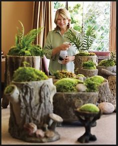 L&D floral design client likes this moss display by Martha Stewart.