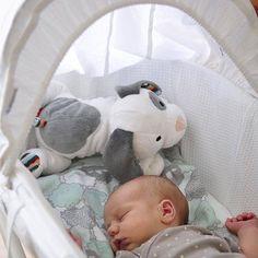 Το Zazu Σκυλάκι Dex Με Λευκούς Ήχους είναι ένα μαλακό παιχνίδι σαν πάπλωμα, που ηρεμεί και καταπραΰνει το νεογέννητο μωρό σας
