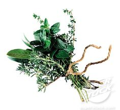Bouquet Garni Recipe Dried Herbs Diy Making And Using Bouquet Garni Made Using Either Fresh Or, French Friday And Herbs How To Make A Simple Bouquet Garni Recipe, 3 Ways To Make Bouquet Garni Wikihow, Herb Bouquet, Bouquet Garni, Chicken Nuggets, Herbal Tinctures, Herbalism, Natural Herbs, Natural Healing, Herbal Remedies, Natural Remedies