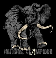 National Champs 14- I would love this shirt but why do they always insist on putting the graphic on the front of the shirt?