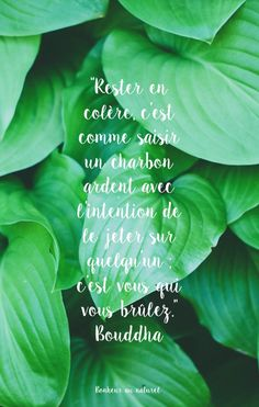 Fond d& // Citation Bouddha Positive Attitude, Positive Thoughts, Mood Quotes, Life Quotes, Gif Disney, Quote Citation, Positive Inspiration, Tumblr, My Mood