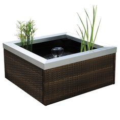 smartpond Patio Pond Kit - Hope we can find a place to put this, I'd like to use some aquatic plants!
