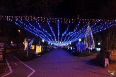 December.Radauti.Suceava.Romania 2013