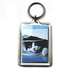 From 27.98 100 Large Blank Photo Keyrings 50 X 35 Mm Insert 92033