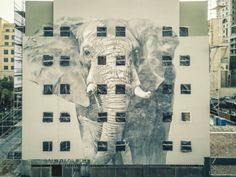 Made in April by the South African muralist 'Giant Elephant' can be found in Johannesburg, South Africa. Photo by Chopemdown Films. Urban Street Art, Best Street Art, Yarn Bombing, South African Artists, Mexican Artists, Beautiful Stories, Italian Artist, Australian Artists, Street Art Graffiti
