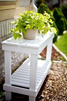 Diy Plant Stand Ideas For Dramatic Look At Home