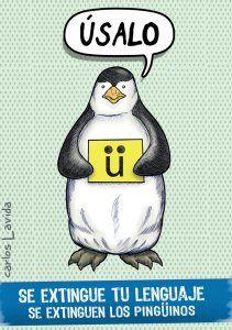 Uso de la 'U' con diéresis (o crema), una semiconsonante: 'pingüino', 'lingüística', 'ambigüedad', 'antiguëdad'...