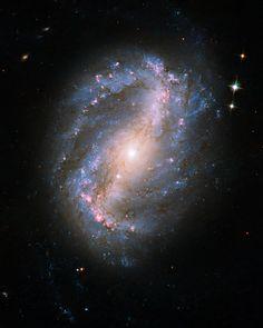 Barred spiral galaxy NGC 6217 js