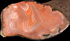 Intra basaltic agates collected somewhere in the United States