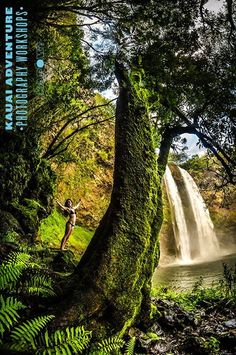 Kauai, Hawaii- Bending with the wind on the Sunrise to Sunset Adventure Photography Workshop  #waterfall#wind#green#trees#adventure#photography#kauai#hawaii#water