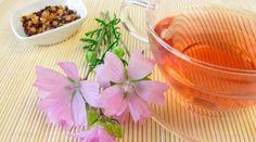 cha-de-hibisco-emagrece-seca-barriga