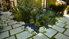 Wow! Can afford more lush garden if small and contained. The pavers can be surrounded by thyme, chamomile, etc.