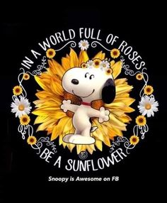 Snoopy and Charlie Brown Schultz Snoopy Images, Snoopy Pictures, Peanuts Quotes, Snoopy Quotes, Peanuts Characters, Cartoon Characters, Charlie Brown Und Snoopy, Sunflower Quotes, Sunflower Types