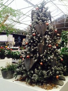 Kamerplantenafdeling in Kerstsferen